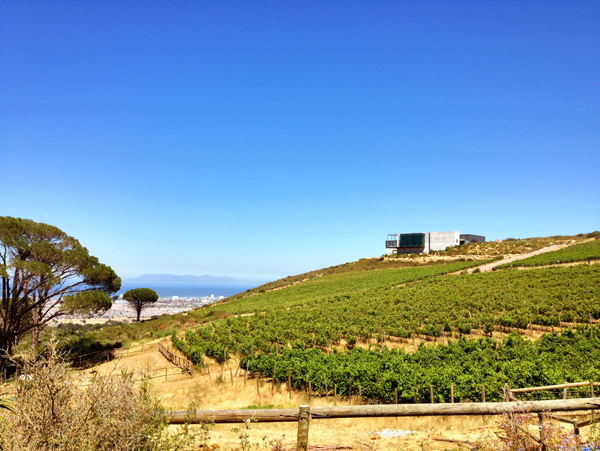 Fine wine encounters review waterkloof wineswaterkloof wines for Jardin winery south africa